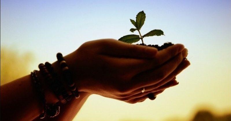 Пастор не отвечает за духовный рост верующих?